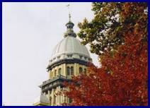 Photo of the Illinois State Capitol dome with autumn leaves.